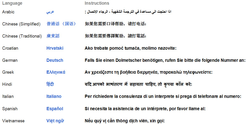 Arabic, Chinese (Simplified), Chinese (Traditional), Croation, German, Greek, Hindi, Italian, Spanish, Vietnamese