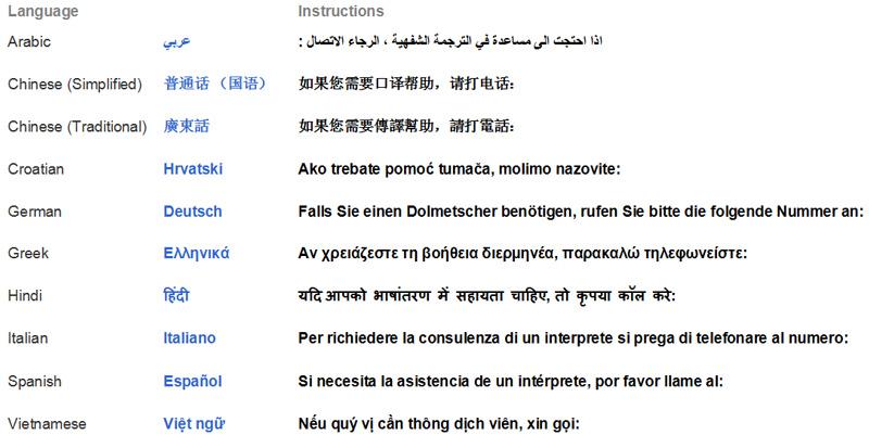 Arabic, Chinese (Simplified), Chinese (Traditional), Croation, German, Greek, Hindi, Italian, Spanish, Vietnamese